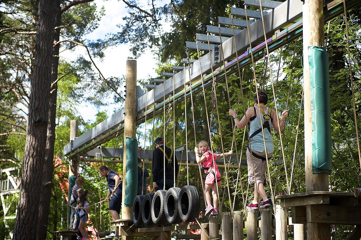 Landmark Centre Tarzan Trail